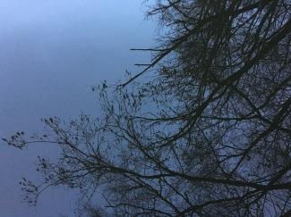 Reflexie în lac